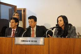 Comissão de Cultura - debate sobre o Carnaval a Cavalo de Bonfim