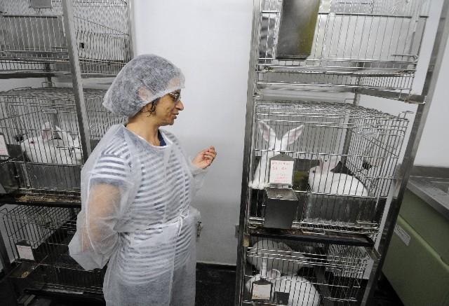 Myrian Morato Duarte, integrante da Comissão de Ética no Uso de Animais da Funed, defende o uso de bichos em testes científicos