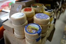 Entrevista para a TV Assembleia sobre queijo artesanal