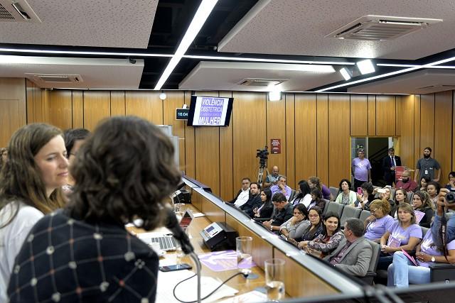 Comissões de Saúde e Extraordinária das Mulheres - debate sobre a proteção contra a violência obstétrica no Estado