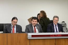 Deputados aprovaram encaminhar relatório final aos secretários de Educação e de Cultura.